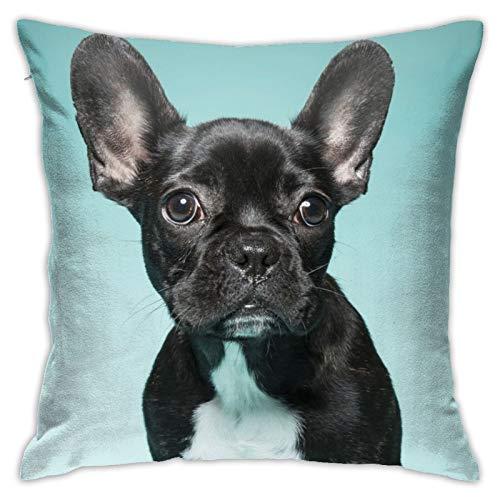 QUEMIN Fundas de almohada obsesionadas con Bulldog francés, fundas de almohada para decoración del hogar para sofá, cama, coche, 45,7 x 45,7 cm