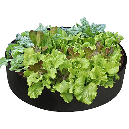 Pannow Raised Garden Bed, Fabric Raised Planting Bed Round Garden Grow Bag for Herb Flower Vegetable Plants (Dia 36'' x H 12'', Black)