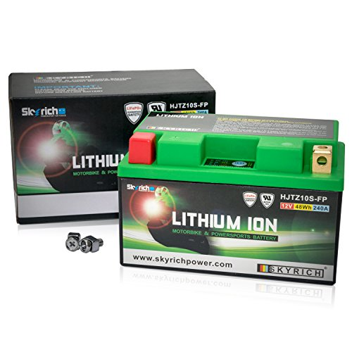 Skyrich HJTZ10S-FP batteria ricaricabile industriale Litio 12 V
