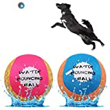 Dog Water Toy Bouncing Ball - 2 Pack Floating Toys for Pool & Lake - Doggie Soft Chew Ball for Outdoor Water Sport Interactive Games
