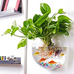 Outgeek Wall Hanging Aquarium - Best Aquaponics Kits