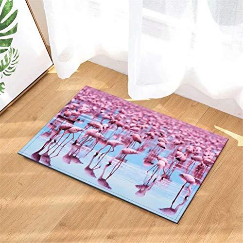 N-brand Alfombras De Puerta.Alfombra Interior.Ducha Alfombras De Entrada De Baño Alfombras Felpudo,Entradas De Piso,Felpudos Antideslizantes,40X60Cm.Flamingo En El Agua.