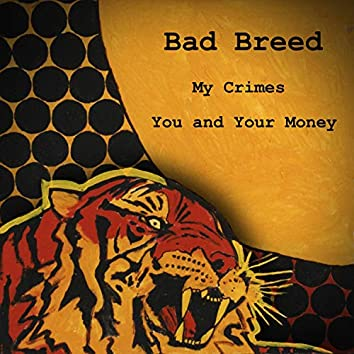My Crimes/You and Your Money