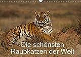 Die schönsten Raubkatzen der Welt (Wandkalender 2020 DIN A3 quer): Bilder von den schönsten Raubkatzen, dem Gepard, dem Leopard, dem Löwe und dem Tiger. (Monatskalender, 14 Seiten ) (CALVENDO Tiere)