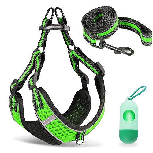 Btromeshy Step-in Dog Harness,Small Dog Harness and Leash Set,Adjustable 3M Reflective Pet Dog Vest for Puppy,Soft Air Mesh Step-in Harness for Small Medium Breed