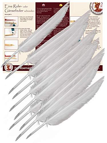 Schreibfedern penna scriptoria 10 Stk.- Kalligraphie Federn - Schreib Stifte - Forum Traiani - Kalligrafie Stift