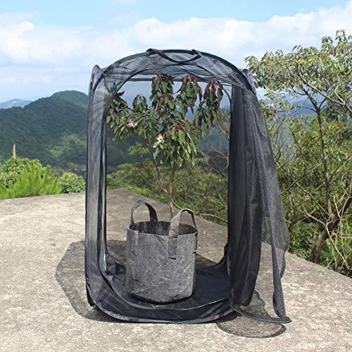 Etophigh Faltbarer Insektenschutz-Schmetterlings-Lebensraum-Käfig Transparenter Pflanzensämling-Inkubator-Pflanzenbeobachtungskäfig