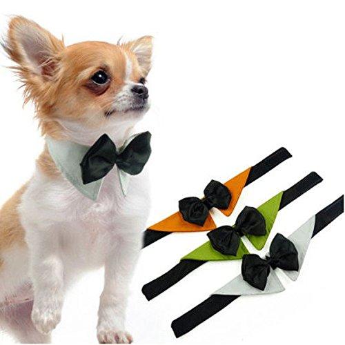 Bazaar hondenhalsband met lint, verstelbaar, voor bruiloft, smoking, kostuum, stropdas