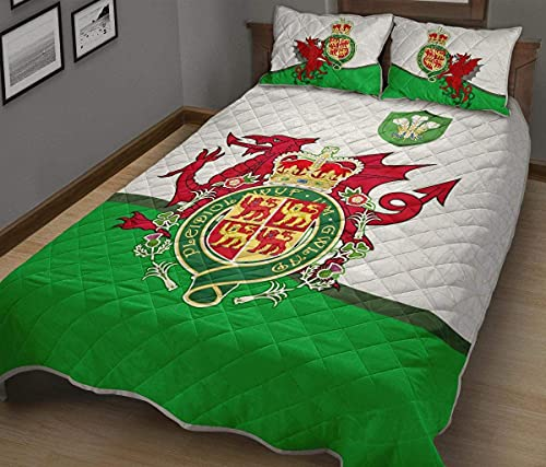 Gift for Family Celtic Quilt Bed Set Welsh Dragon with Celtic Knot Bedding Set 3 Pieces Quilt Cover with Pillowcase Cover Soft Comfortable for Kids Parents Us Throw Twin Queen King Size