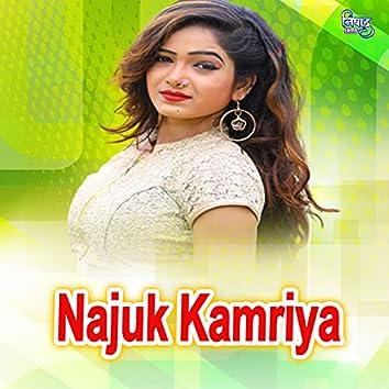 Najuk Kamriya