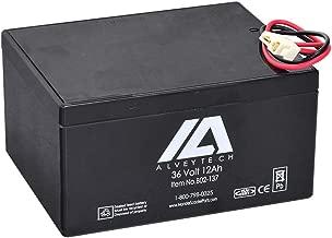 AlveyTech 36 Volt Battery for Minimoto ATV, Go-Kart, Dune Buggy, Maxxi, Motocross XRF500