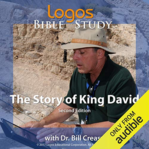 The Story of King David audiobook cover art
