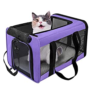 VIEFIN Pet Carrier for Small Medium Cats Dogs,Airline Approved Small Dog Carrier Collapsible Medium Cat Carriers Soft-Sided, Pet Travel Carrier for 15 lbs Cats Dogs Puppies Kitten (Medium, Purple)