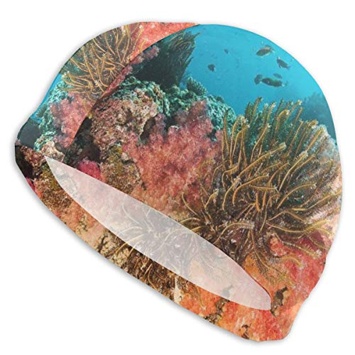 NoneBrand Rainbow Reef Gorro de natación de licra de alta elasticidad, antideslizante, para adultos, unisex, gorro de natación para pelo largo y corto