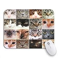 ROSECNY 可愛いマウスパッド グレー愛らしいかわいい猫顔コラージュ赤い動物美しい滑り止めゴムバッキングノートブックマウスマット用マウスパッド
