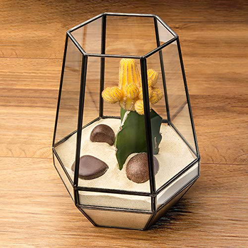 Noir 18x18x23cm Clear Glass Terrarium Planter geometrische vorm Perfect voor display bruiloften tabletops Unieke centreerbank of vensterbanken voor luchtsystemen op afstand moss kleine succulenten binnen