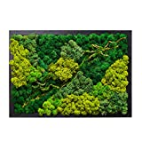 LVZHIHUAN Moss Wall decor Real Preserved Moss No Maintenance Required Eco Natural Green Wall Art Moss Frame Living Plants Vertical Garden 19.7 x13.8inch,Black Frame