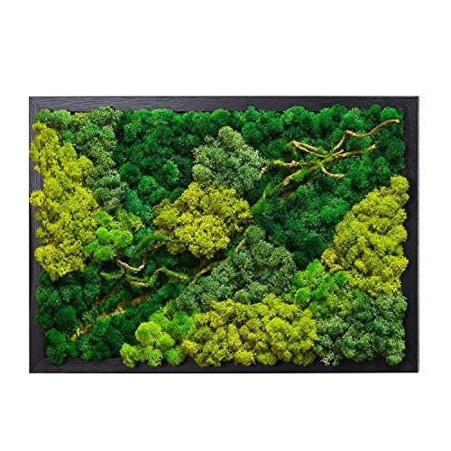 LVZHIHUAN Moss Wall decor Real Preserved Moss No Maintenance Required Eco Natural Green Wall Art Moss Frame Living Plants Vertical Garden 19.7 x13.8inch,Black Frame