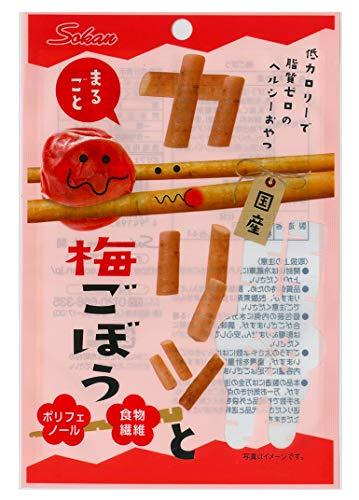 壮関 カリッとまるごと梅ごぼう 22g ×10袋