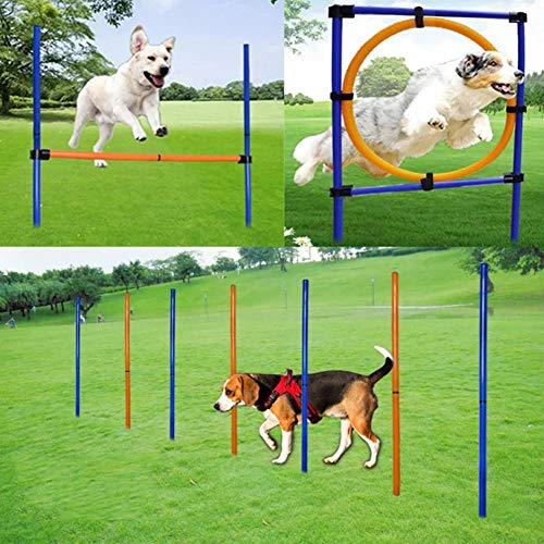 MelkTemn Pet Outdoor Games Hond Agility Oefening Training Apparatuur Agility Starter Kit Hond Speel Run Jump Obedience Training Set Verstelbaar met Agility Hurdle, Slalom Polen en de Jumping Hoop, Orange,Blue