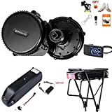 BAFANG BBS02 48V 750W Mid Drive Kit, 8Fun Bicycle Motor Kit with 500C LCD Display & 44T Chainring, Electric Brushless Bike Motor Motor para Bicicleta for 68-73mm BB (NO Battery)