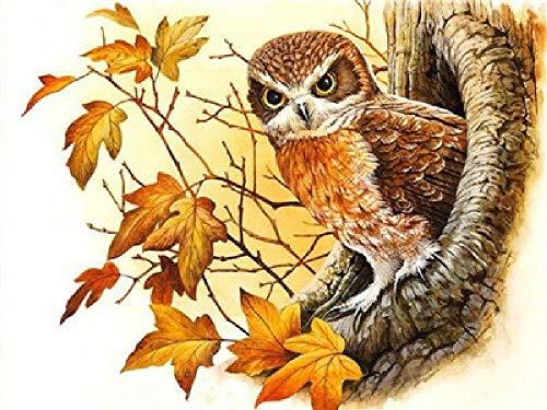 Olieverfschilderij digitaal om zelf vogels in de nestkast met de hand geschilderd op canvas cadeau decoratie huis muur woonkamer compleet 40 x 50 cm
