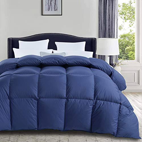 ROYALAY Luxurious All Season Goose Down Comforter Queen Size Classic Blue Duvet Insert, 42 oz Fill Weight Hypo-allergenic Goose Down Feather, 100% Cotton Shell Down Proof with 8 Corner Tabs
