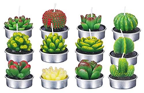 artizan 12 Bougies de Cactus, utilisées pour Les Plantes graisseuses, Plantes artificielles, la Saint-Valentin 2021, utilisée pour Les fêtes, Mariages, spas, décoration d'intérieur (Color : 4)