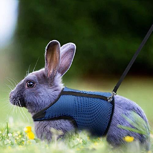 Petcomer Arnés Conejos con Correa Elástica para Animales Pequeños Conejos Hámsteres Gatos(S, Azul)