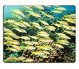 Yanteng Alfombrilla de ratón Gaming Alfombrilla de ratón Alfombrilla de ratón de Caucho Natural Escuela de pez chivo de Aleta Amarilla Mulloidichthys vanicolensis Submarino Mar de Andaman M0A05715