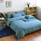 QIANBAOBAO Juego de funda de edredón y funda de almohada de 3 piezas, color liso, para invierno, color liso