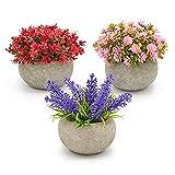 Magilot Plantas Artificiales Decorativas - Decoracion Hogar Habitacion Salon Baño Cocina Escritorio - Pack 3 Plantas Pequeñas con Flores Artificiales