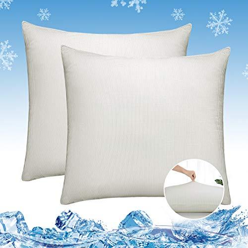 Luxear, set di 2 federe per cuscino rinfrescante, morbido, sottile e traspirante, con chiusura lampo, federa setosa per capelli e pelle, per camera da letto, divano, 80 x 80 cm, colore: grigio/bianco
