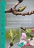 Gemmothérapie - Les bourgeons au service de la santé - Guide pratique et familial