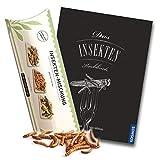 Insekten Kochbuch Set - Insektenkochbuch & Insekten zum Essen / Heuschrecken, Mehlwürmer und Grillen - dazu leckere Insektenrezepte von SNACK insects
