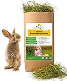 Sonnenberg Hof Heu 500g - Frisches Wiesenheu 1. Schnitt für Kaninchen Meerschweinchen Hamster und Nager I Bergwiesenheu für Kleintiere