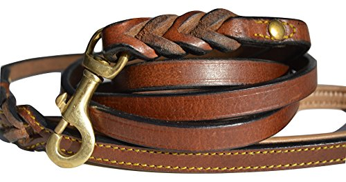 Soft Touch Collars Leather Braided Dog Leash, Brown with Leather Padded Handle, 6 Foot