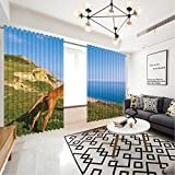 MOOCOM Hungarian Vizsla Dog,Screen Curtain 170504 for Bed Living Room Curtains 63 inch Wide x 63 inch high
