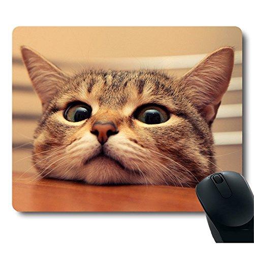 AEMAPE Lindo Gato Curioso te mira con Ojos ansiosos sobre la Mesa Alfombrilla de ratón