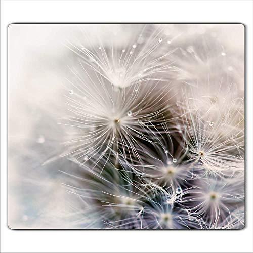 Pusteblume 2 Set Glas Abdeckplatte 2x30x52 Schneidebrett Herdabdeckplatte