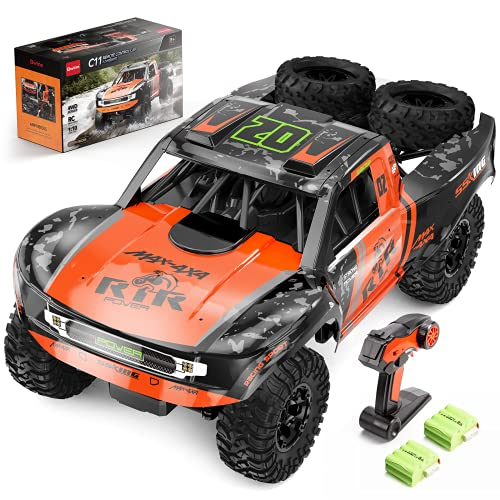 Bwine C11 1:10 Scale RC Car, Amphibious Remote Control Car for Boys Age 8-12, 4WD Waterproof RC Truck, Rock Crawler Vehicle for Kids and Adults, 2 Batteries for 40+ Min Play