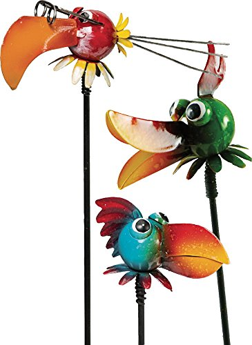 Vogelkopf son pick 40 cm (multicolore)
