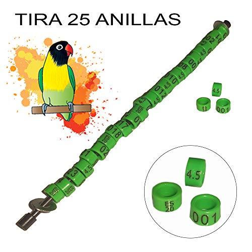 NestQ Anillas Agapornis 2020 Color Verde Federativo