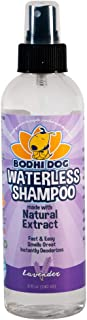 7 Best Waterless Dry Shampoo for Dogs 6