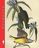 Notebook: Connecticut Warbler - Gentiana Saponaia, Ring-tailed Warbler, Oporornis agilis, Sylcivola agilis, 1856, John James Audubon (Pick up your pen and write)