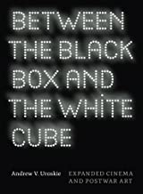 Between the Black Box and the White Cube: Expanded Cinema and Postwar Art