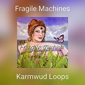 Fragile Machines