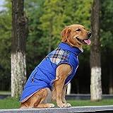 SULESI Weste Großer Hund Kleidung Mittlerer Hund Großer Hund Goldenes Haar Labrador Dicke Wintermütze Hundemantel Haustier Weste Blau 28# (Empfohlen Büste 81-86Cm)