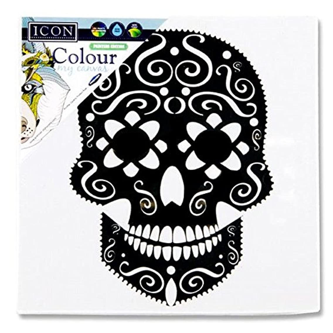 Premier Stationery G3812517 100 x 100 mm My Canvas Skull Icon Colour