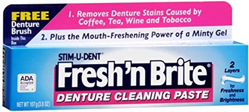 Fresh 'N Brite Denture Cleaning Paste, 3.80 Ounce (Pack of 4)